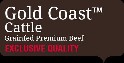 Gold Coast Cattle